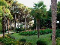 Санаторий «Утес» Алушта: парк
