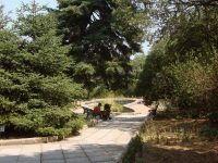 красота парка
